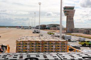 Terminal de cargas do Aeroporto de Natal tem exportação recorde de frutas